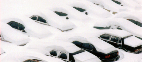 rows of cars buried in deep snow