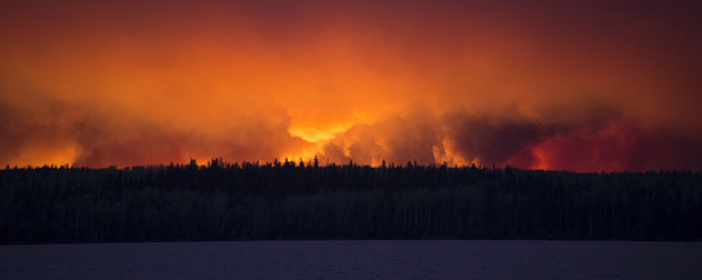 wildfire on the horizon behind forest silhouette