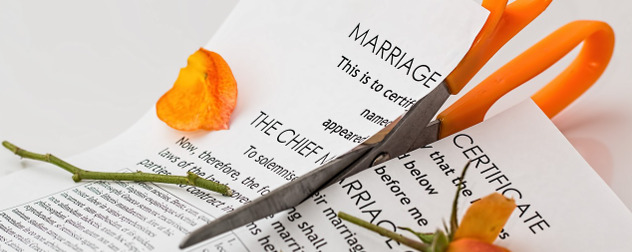 scissors cutting through a marriage certificate and a rose stem, with orange rose petals scattered on the paper