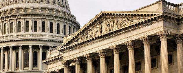 United States Capitol building, detail