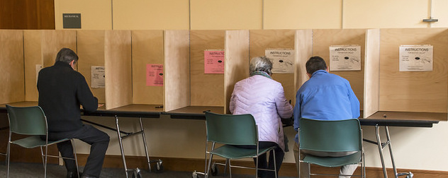 voters seated at voting booths, backs to the camera, in winter coats