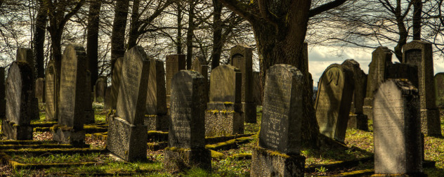 graveyard headstones among leafless trees