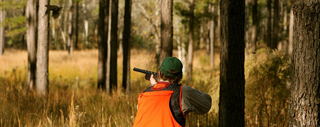 hunter in safety gear aims a shotgun at a bird in flight
