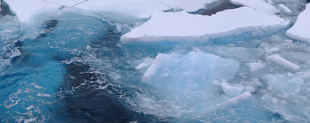 Arctic sea ice, viewed from above