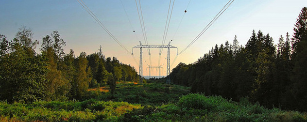 power lines in a wooded landscape at sunset