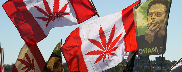 banners blending the Canadian flag with a marijuana leaf
