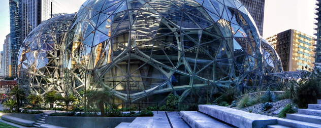 Amazon Spheres, panoramic detail