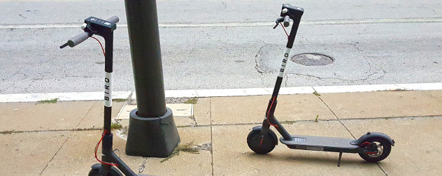 Bird electric scooters parked on a sidewalk.
