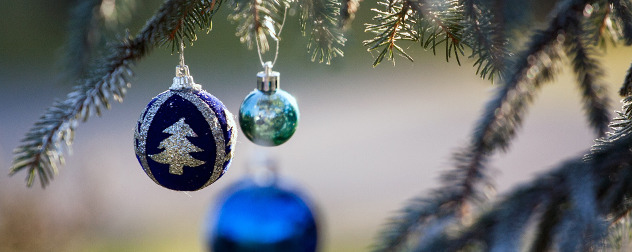 blue, bulb-style ornaments hanging from an evergreen tree's branches.