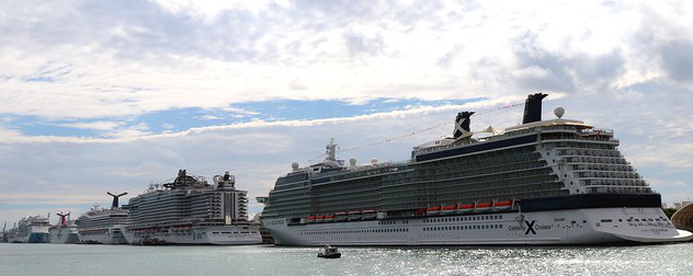 cruise ships in a line on the water at PortMiami