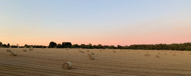 hay bales in an agricultural field.