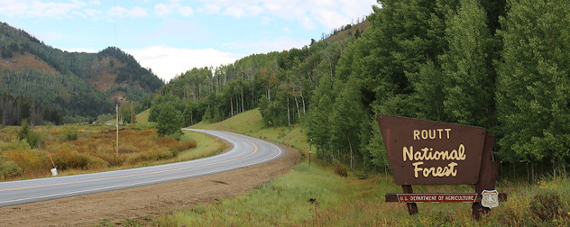 Routt National Forest, one of many national forests nationwide, along Routt County Road 129 in northern Colorado.